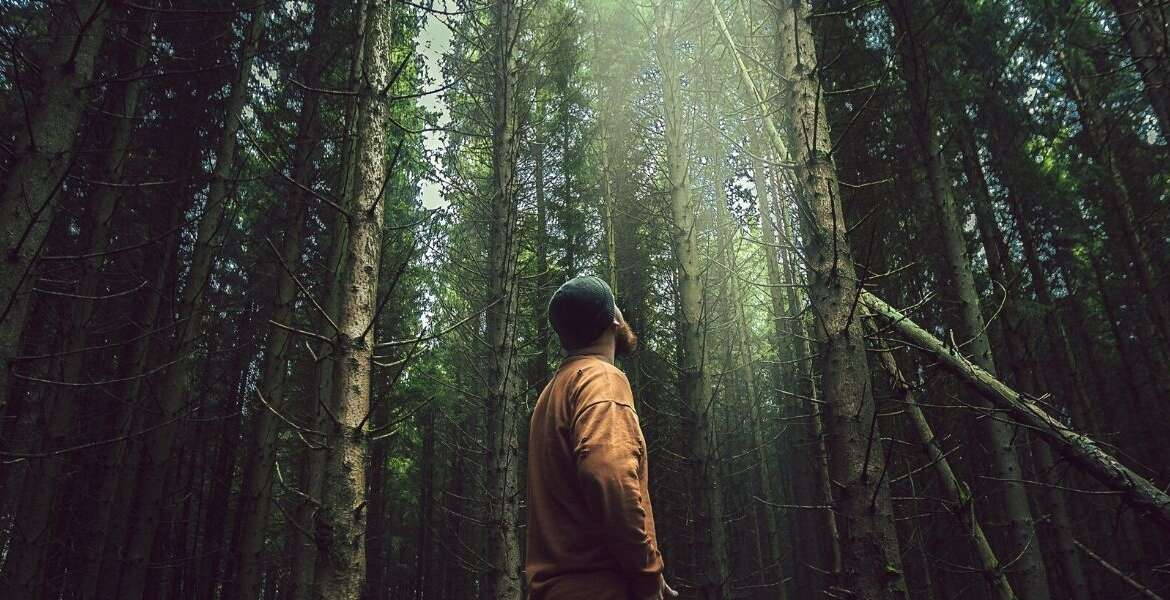 How Spending Just 15 Minutes a Day in Nature Can Connect You to Your Higher Self